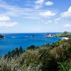 cathedral-cove-nz-2.jpg