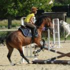 fete-du-club-obstacle-galop-tricastin-2013-15.jpg