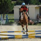 fete-du-club-obstacle-galop-tricastin-2013-23.jpg