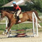 fete-du-club-obstacle-galop-tricastin-2013-26.jpg