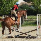 fete-du-club-obstacle-galop-tricastin-2013-38.jpg