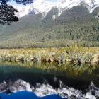 mirror-lakes-nz-6.jpg