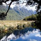 mirror-lakes-nz-7.jpg