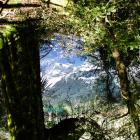 mirror-lakes-nz-9.jpg